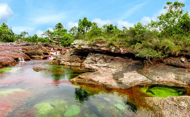 Caño Cristales, Macarena, Colombia